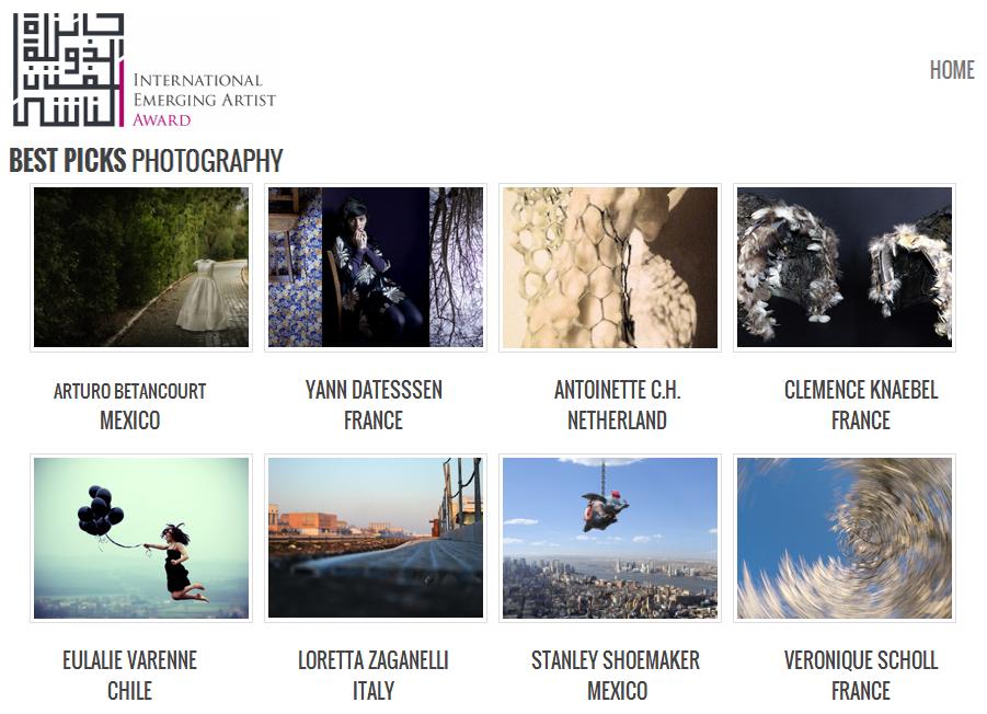 Mention : International Emerging Artist Award 2013